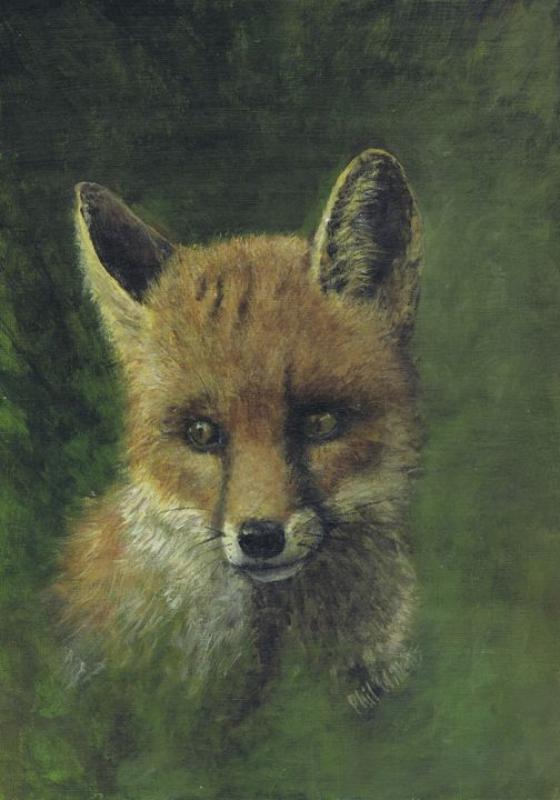 Fox in a wood - Phil Willetts