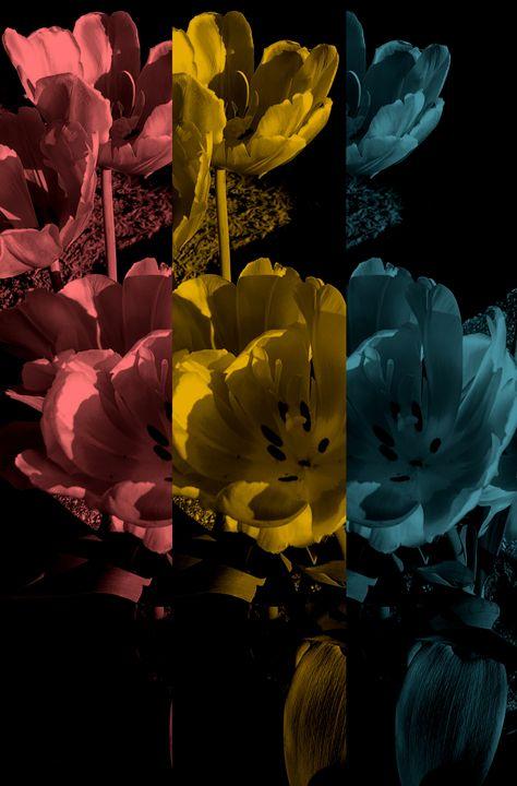 3 shades - Dawn Haschalk