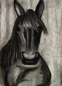 Horse - Leala Marie Art