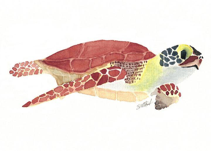 Sea Turtle - Sean Kienle Watercolor Designs