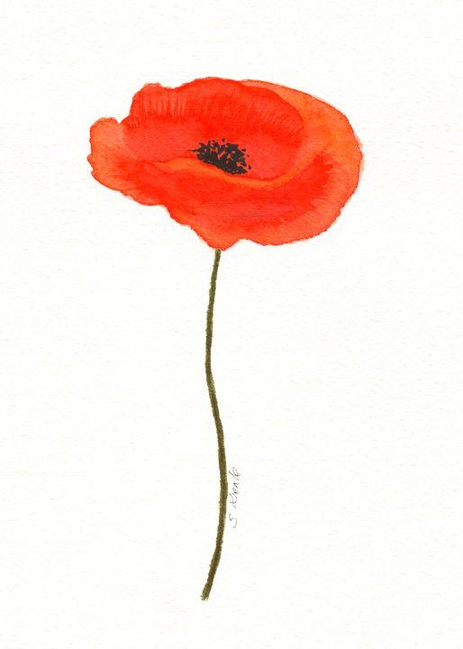 Red Poppy - Sean Kienle Watercolor Designs