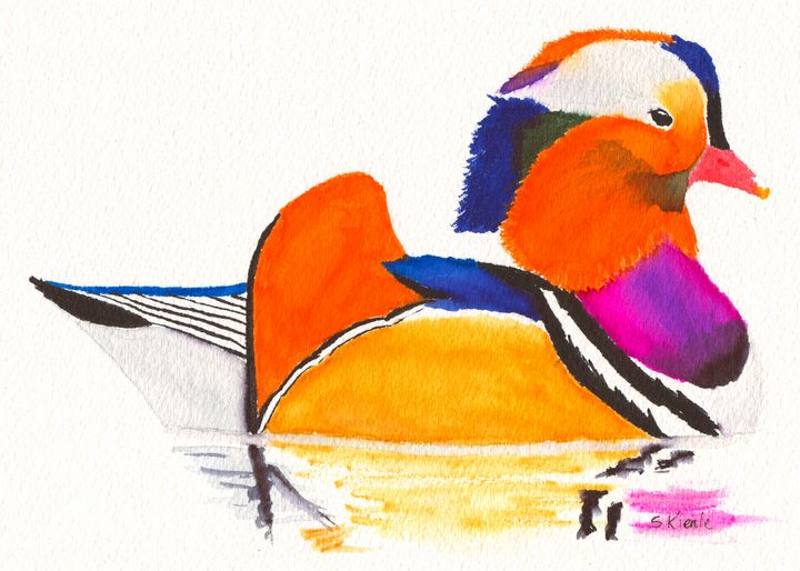 Mandarin Wood Duck - Sean Kienle Watercolor Designs