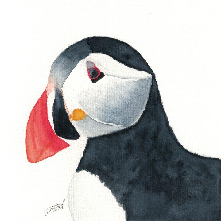 Atlantic Puffin - Sean Kienle Watercolor Designs