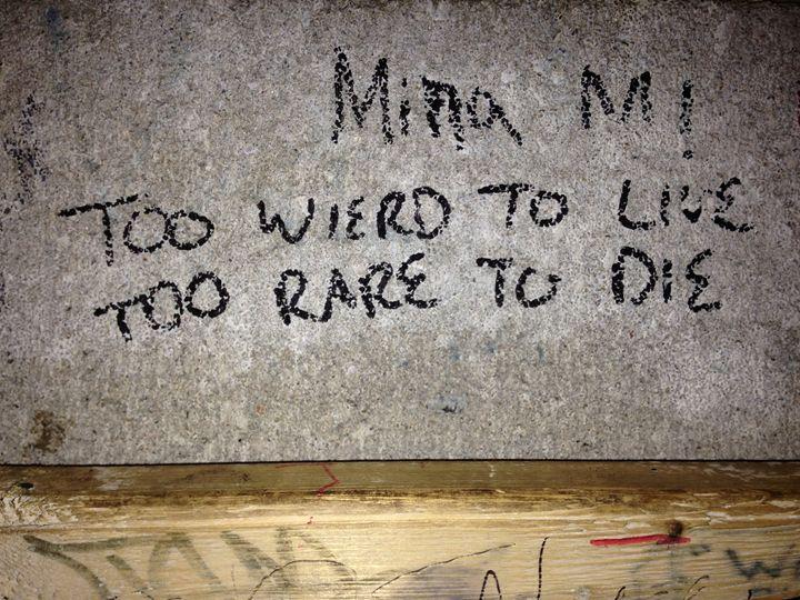 too weird to live, too rare to die - Autumn Rose