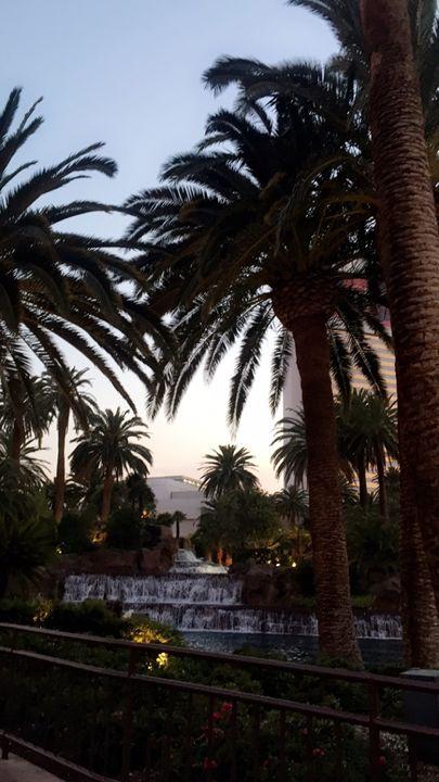 Palm Trees in Vegas - Autumn Rose