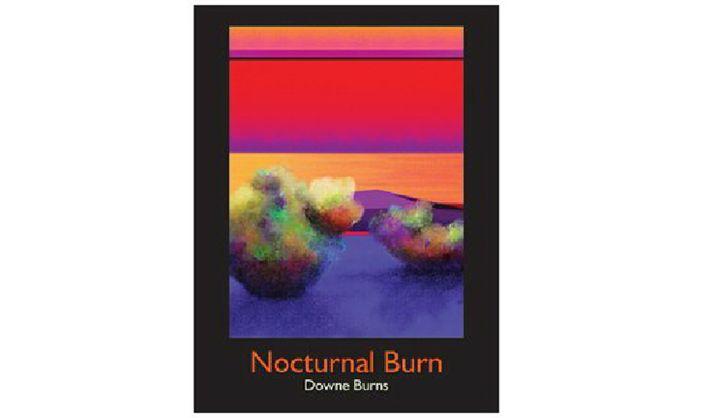 Nocturnal Burn - Downe Burns Gallery