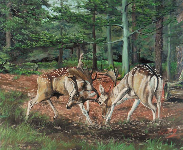 European fallow deer - Painter Marek Vodvářka