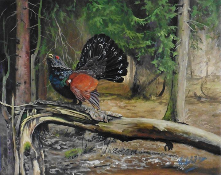 The wood grouse - Painter Marek Vodvářka