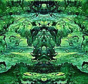 Verde Verge