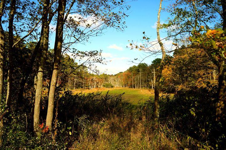 Fall Scenery - John W. Tuttle