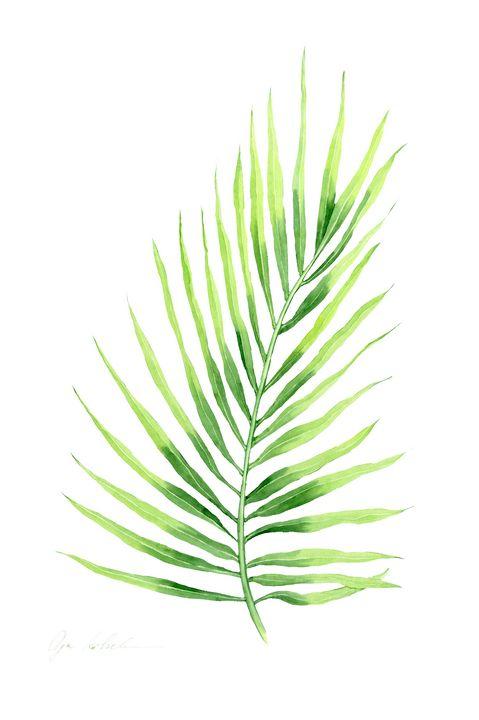 Palm Leaf 1 - Olga Koelsch