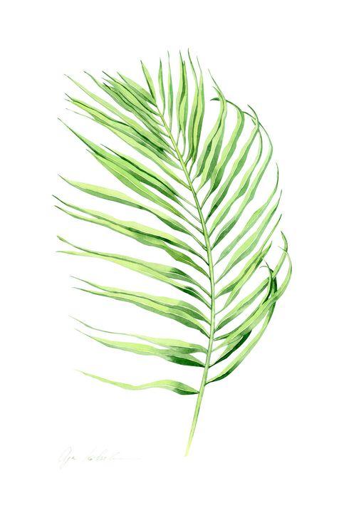 Palm LEaf 2 - Olga Koelsch