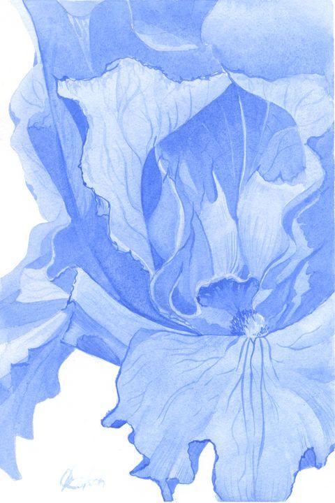 Blue Iris - Olga Koelsch