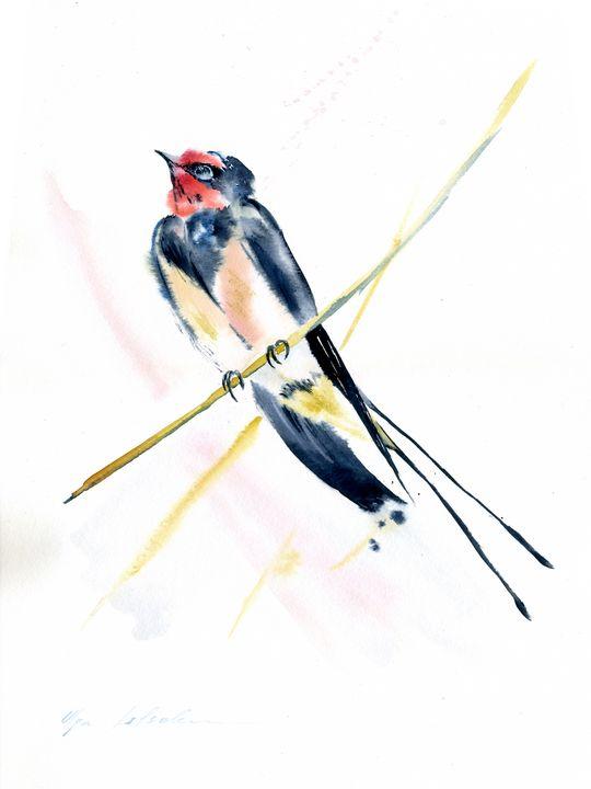 MARTLET BIRD - Olga Koelsch