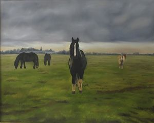 Shire Horses at Dawn