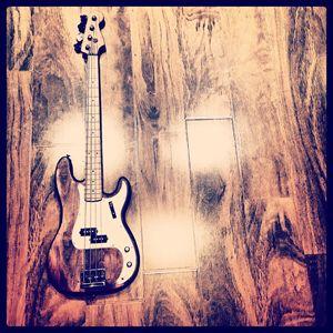 Nashville Bass - Shop O' Wonders