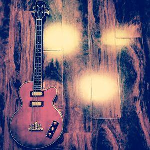 Allen Woody Signature Bass - Shop O' Wonders