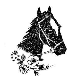Horse head - symbol of free life