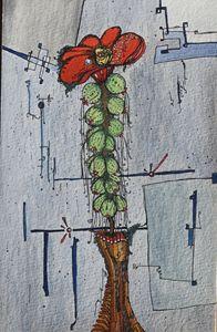 Cactus Decor