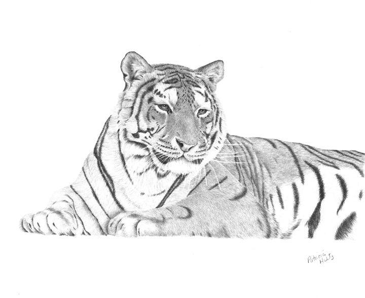 Zarina A Siberian Tiger - PatriciaHiltz