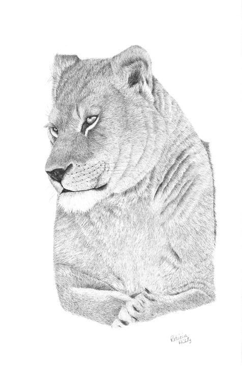 Lioness - PatriciaHiltz