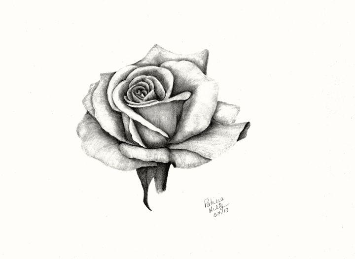 A Roses Beauty - PatriciaHiltz