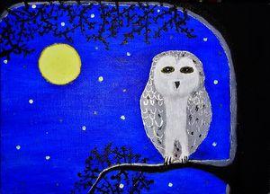 Midnight owl Royal