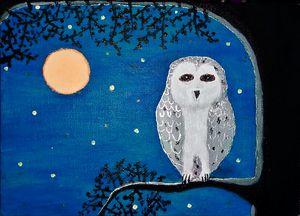 Midnight owl  Teal