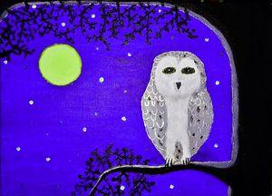 Midnight owl Purple