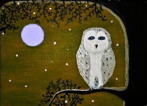Midnight owl Brown