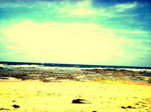 The sea light