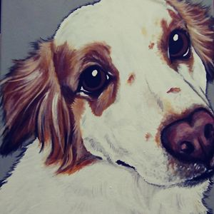 "11""×14"" Custom Pet Portrait Painting"