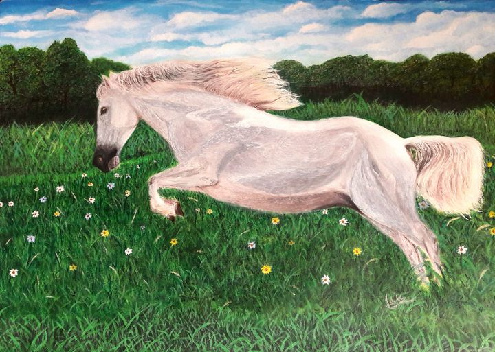 Free Horse - Jacks Ninan Creations Art