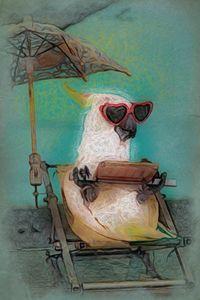 Pecker the Parrot - Henry Harrison