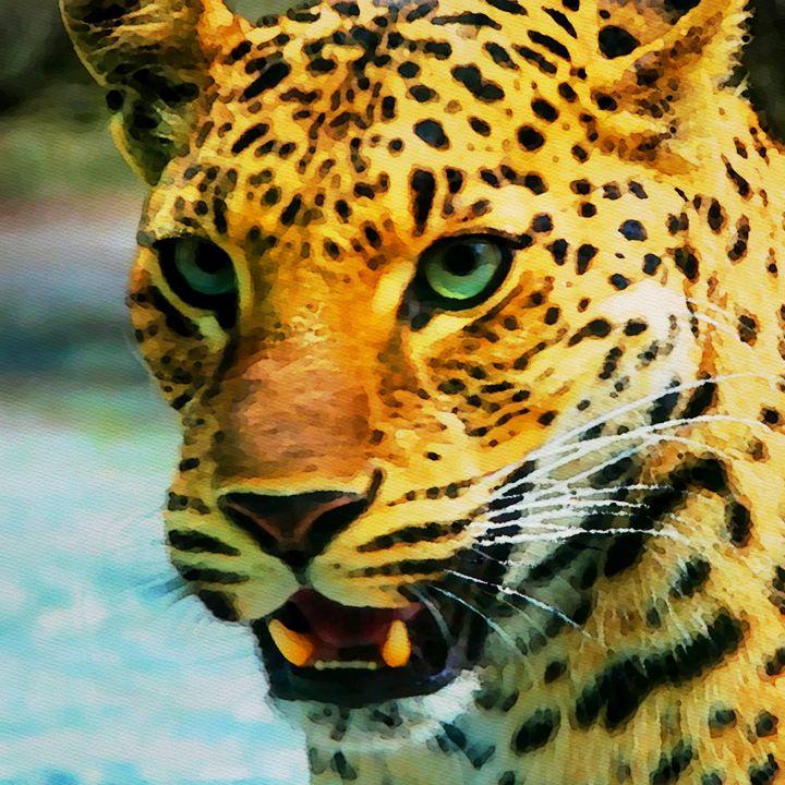Leo Leopard - Henry Harrison