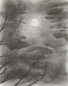 Night Sky - Vguidry