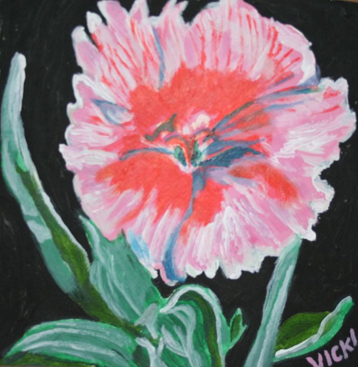 Dianthus Pinks - VickiJane Paintings