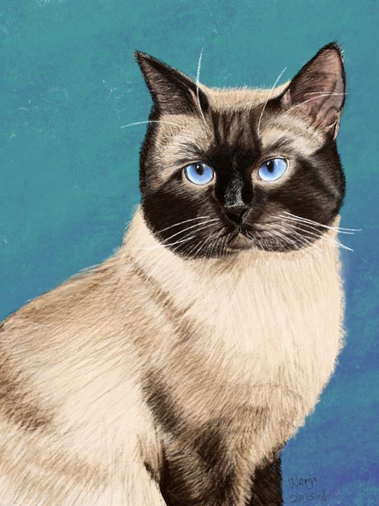 Siamese Cat Portrait - Wenji's Gallary