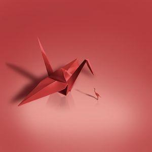 Crane meets Crane. - The Five Jays