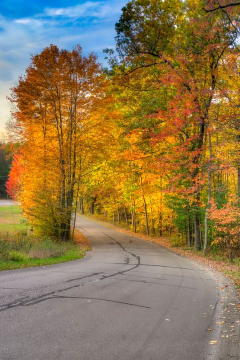 West Michigan Fall Road - Life is a Highway Photo