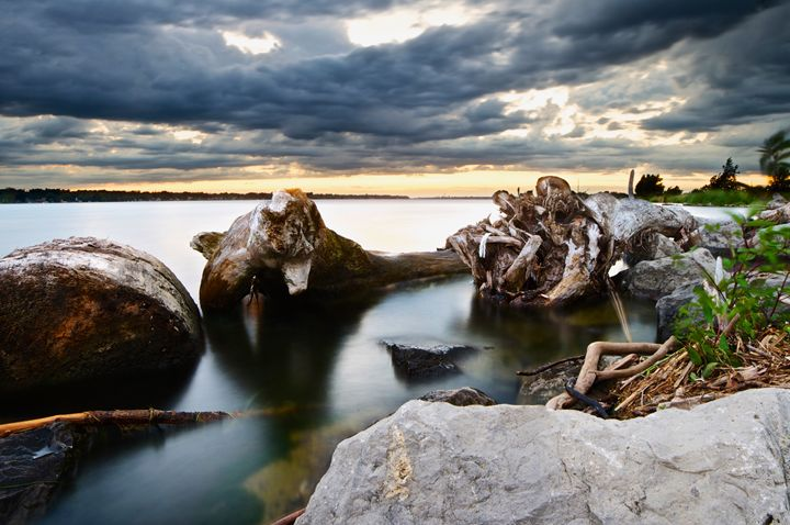 Driftwood - Karl J. Steblein Jr.