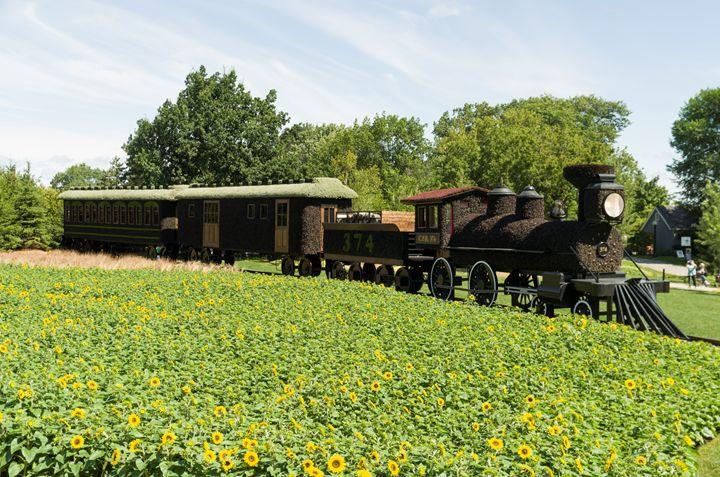 CPR train 374 #2 - Bob Corson Photography