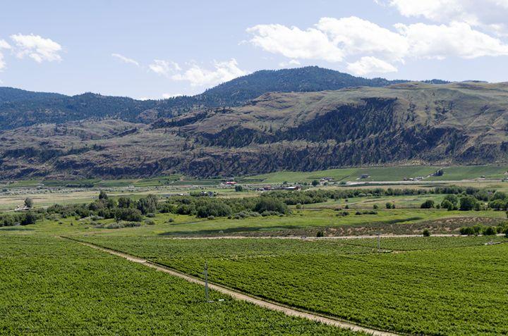Okanagan Valley wine country 12 - Bob Corson Photography