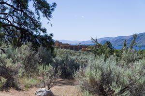 Sonoran Desert Landscape 30 - Bob Corson Photography