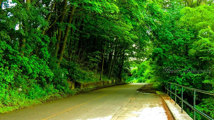 Your road to the future - Ghadir Photography