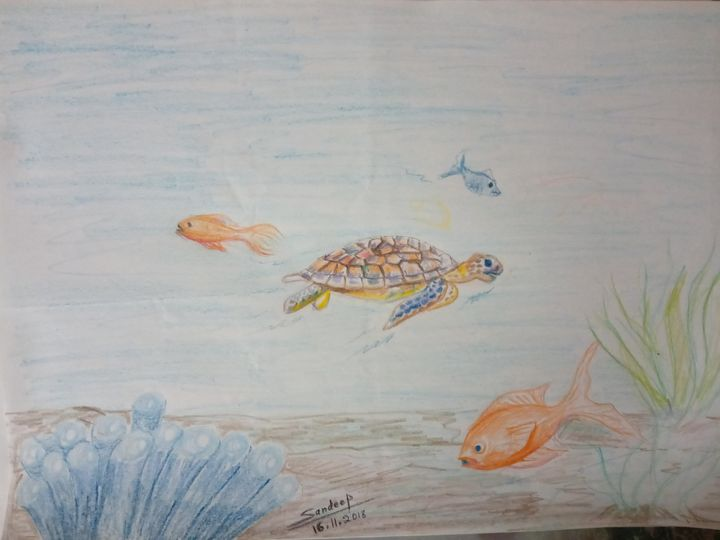Journey to discover truth - Turtle - Sandeep's gallery