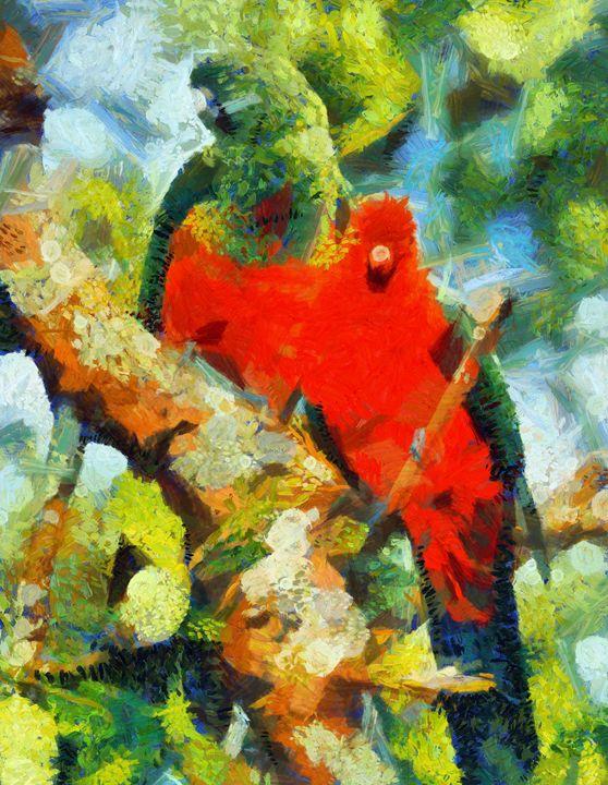 parrots - Mai Shisa art