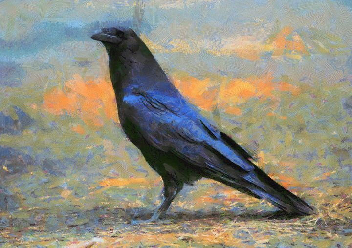 Corax corvus - Mai Shisa art
