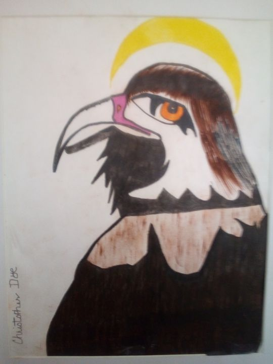 Bird with halo - Christopher Dye