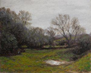 Muddy field, Savick Brook